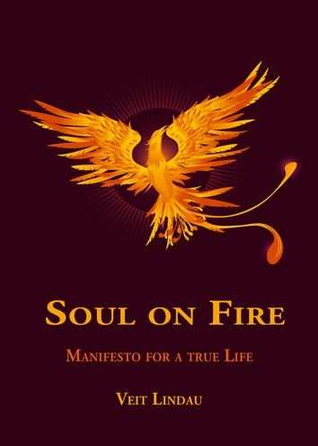 Soul on Fire. True Life Manifesto: Wake up and live your full potential! (English Edition)