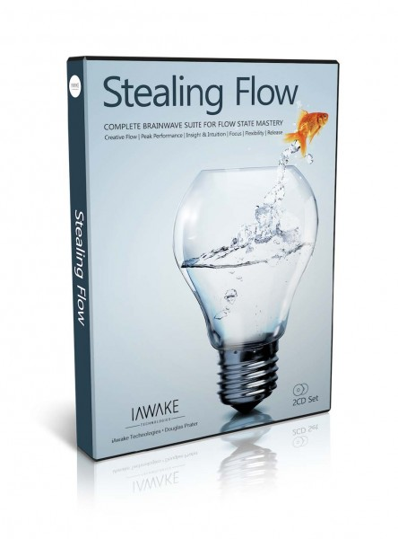 Stealing Flow - Digital Download